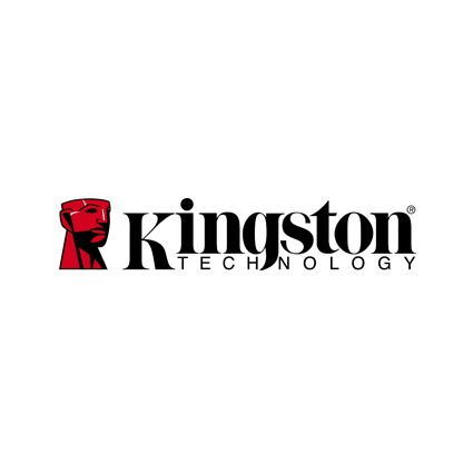 logo Kingston